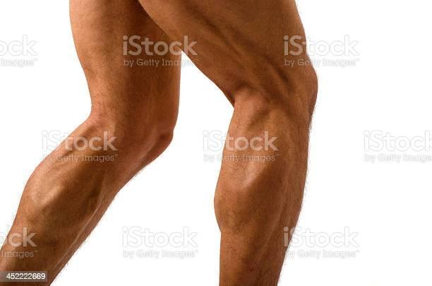 Primer Plano De Bodybuilder Muscular En Las Piernas Foto de stock y más banco de imágenes de Pantorrilla