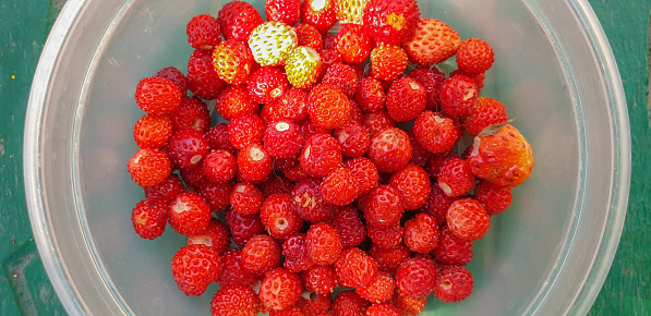 Directly above wild strawberries in a bowl on green background.