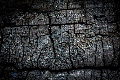 Close up of burnt log for use as background