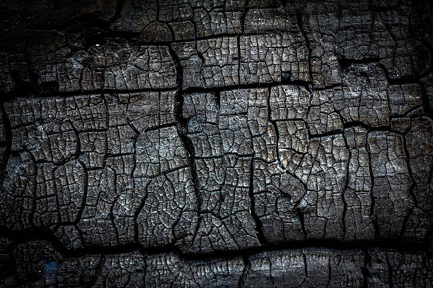 Nahaufnahme von verbrennen log – Foto