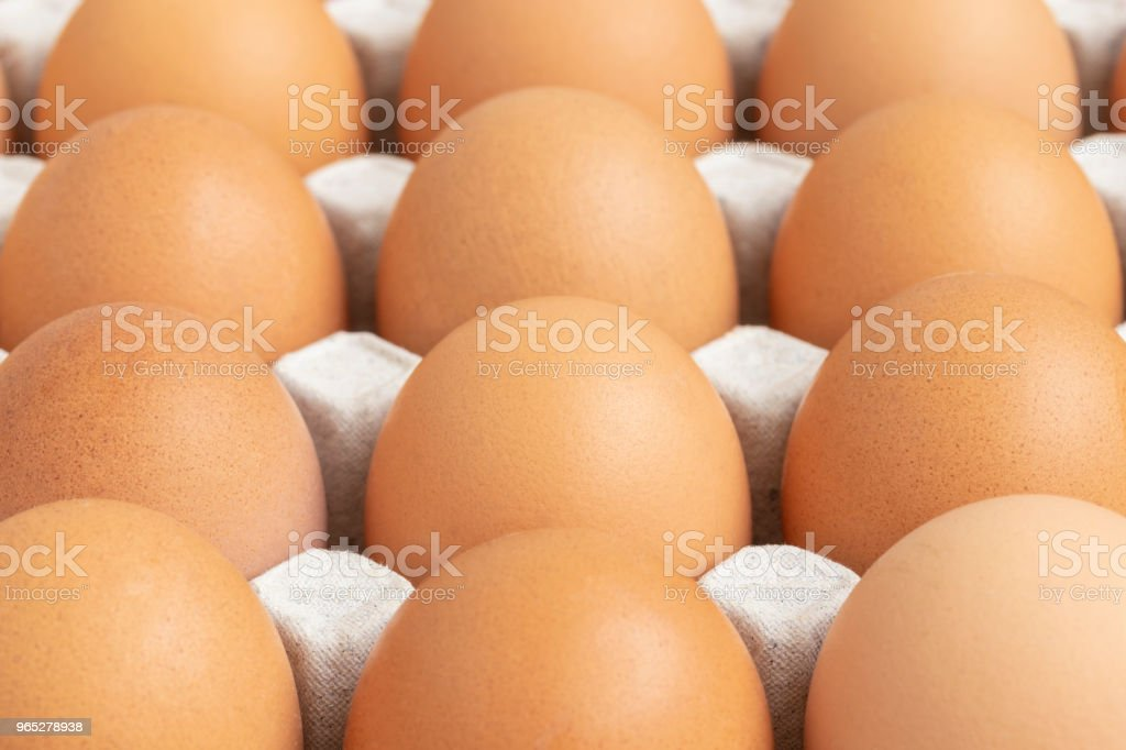 close up of chicken eggs in paper tray royalty-free stock photo