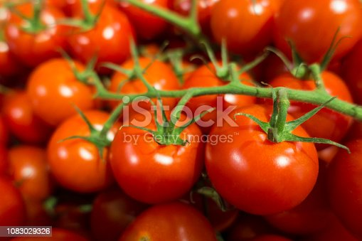 bunch of vine red ripe tomatos at the framer's market