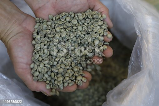 istock Close up of Coffee beans in hands not fried coffee grains. 1196785822