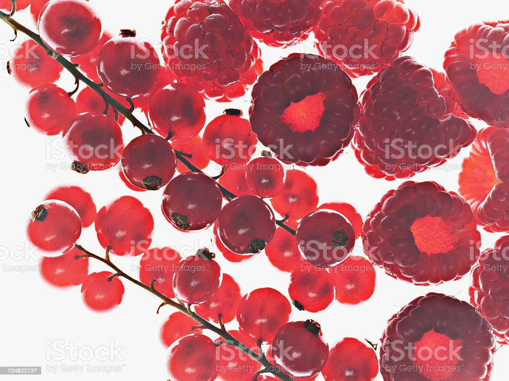Close up of cranberries and raspberries stock photo