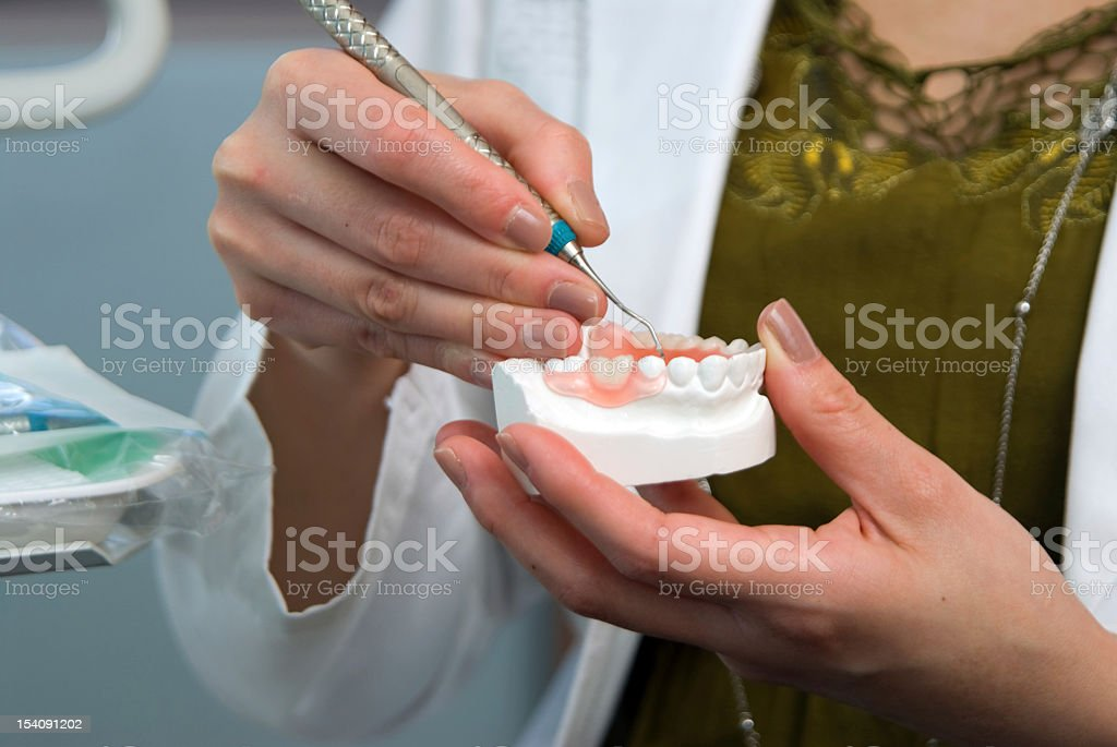 Close up of dental mold royalty-free stock photo