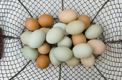 Easter eggs painted in pastel colors in a basket on white wooden background.