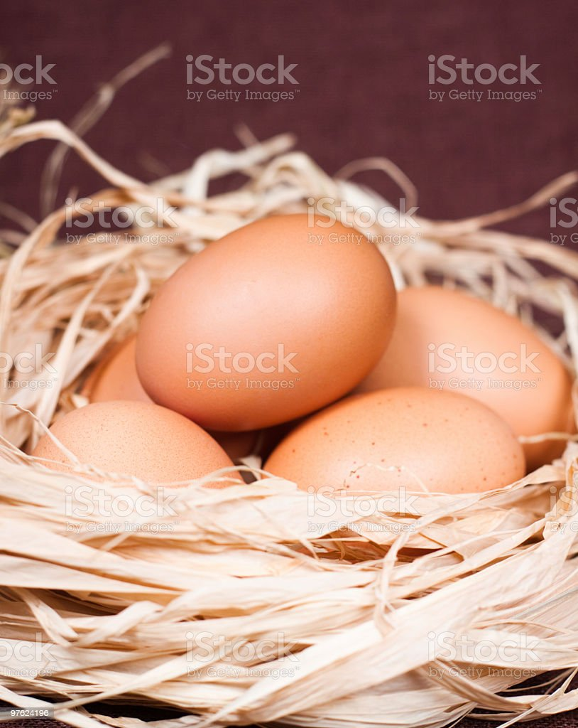 Close up Of Eggs royalty-free stock photo