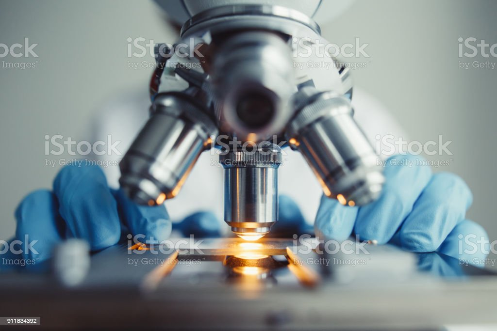 Close up of examining of test sample under the microscope stock photo