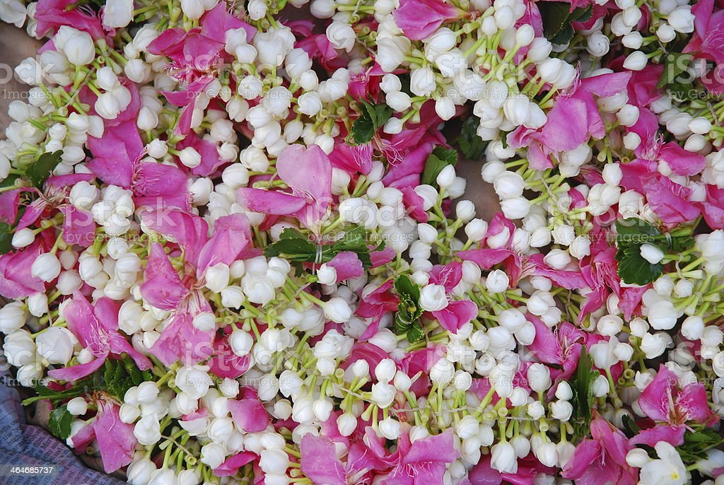 close up of flower garland jasmine mogra stock photo more pictures