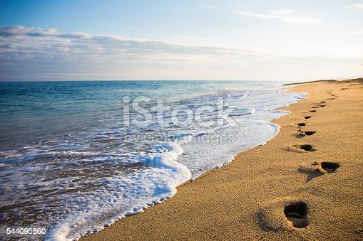 Women walking on the beach. Location Hawaii.