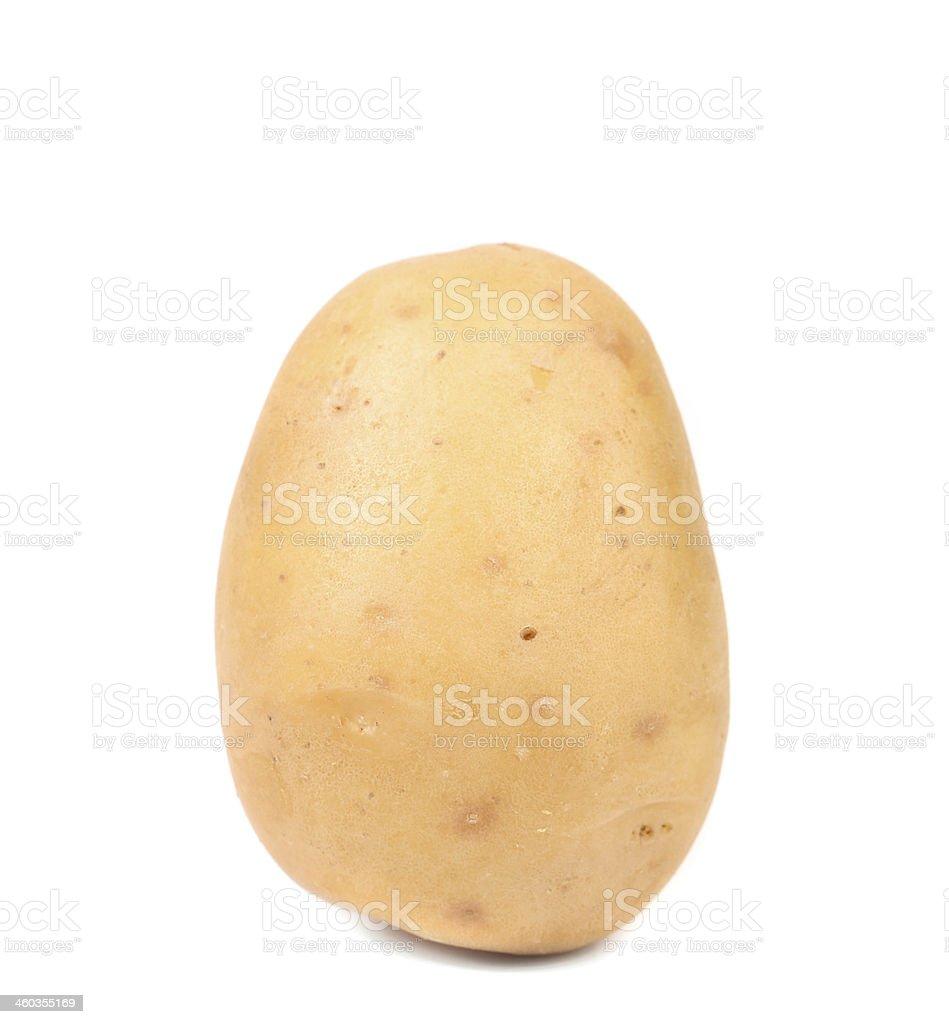 Close up of fresh potato. royalty-free stock photo