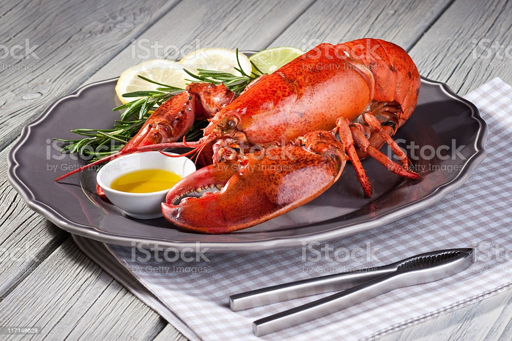 Close up of fresh steamed lobster with herbs in grey plate stock photo