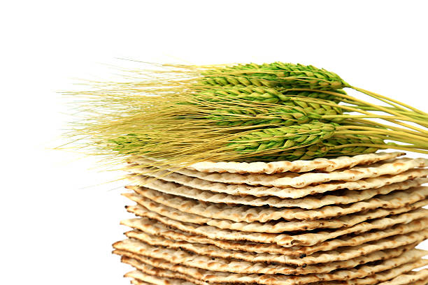Close up of fresh wheat laying atop a pile of Matzoh [url=http://www.istockphoto.com/file_search.php?action=file&lightboxID=6013607][img]http://farm5.static.flickr.com/4096/4755352852_a99a55e504_m.jpg?v=0[/img]  [/url] passover stock pictures, royalty-free photos & images