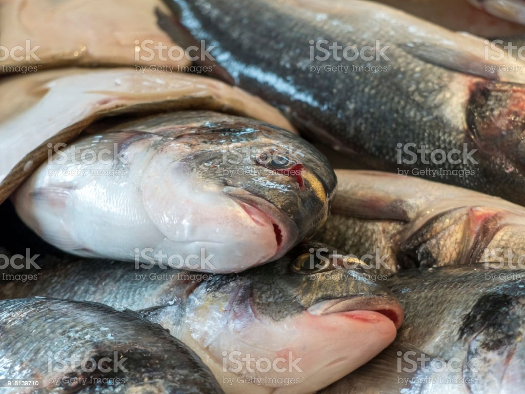 Close up of freshly caught fresh fish. You can see the mouths of the fish and the eyes. stock photo