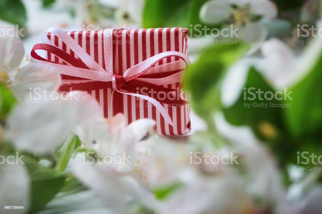 Close up van de doos van de gift in bloeiende apple boom bloemen. - Royalty-free Appel Stockfoto