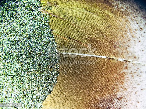 Background photograph using a macro lens to take close up pictures of a crafters glitter feather.