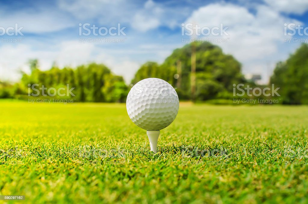 Close up of golf ball on tee royaltyfri bildbanksbilder