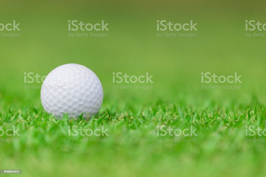 Close up of Golf ball on the green grass