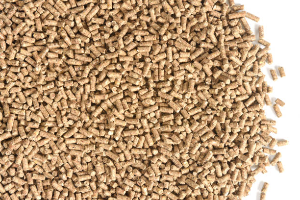nahaufnahme von granulierten tiernahrung textur - füttern stock-fotos und bilder