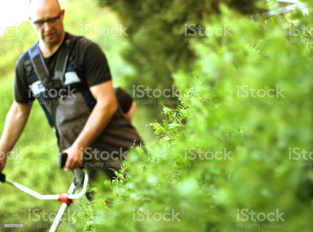 Close up of Grass brush cutter - foto stock