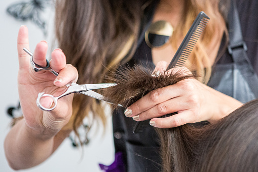 Close up of hairdressers hands cutting hair