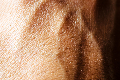 Close Up Of Hand Skin Stock Photo - Download Image Now