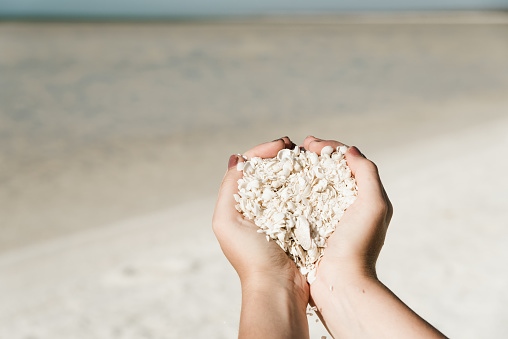 Ttourist holding tiny white sea shells in both hands. Hands full of shells on Shell Beach, Western Australia. Cropped view