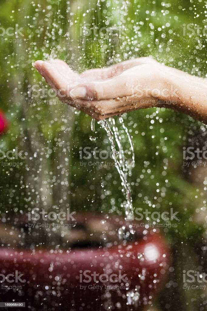 Close up of hands on tropical rain. stock photo