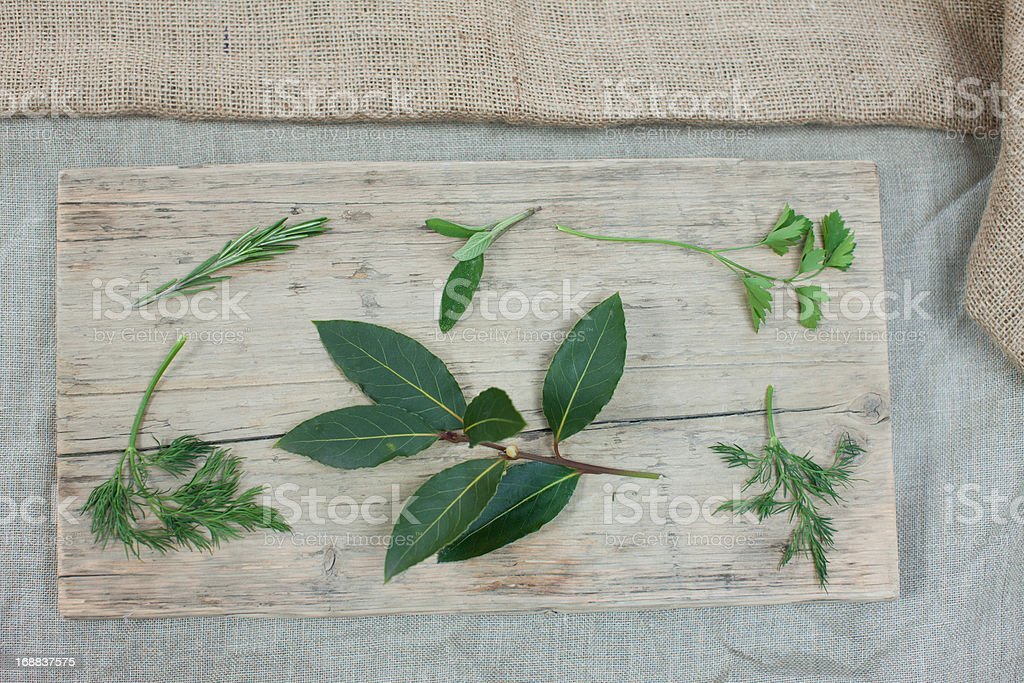 Close up of herbs royalty-free stock photo
