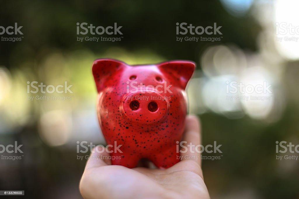 Close up of human hand holding piggy bank stock photo