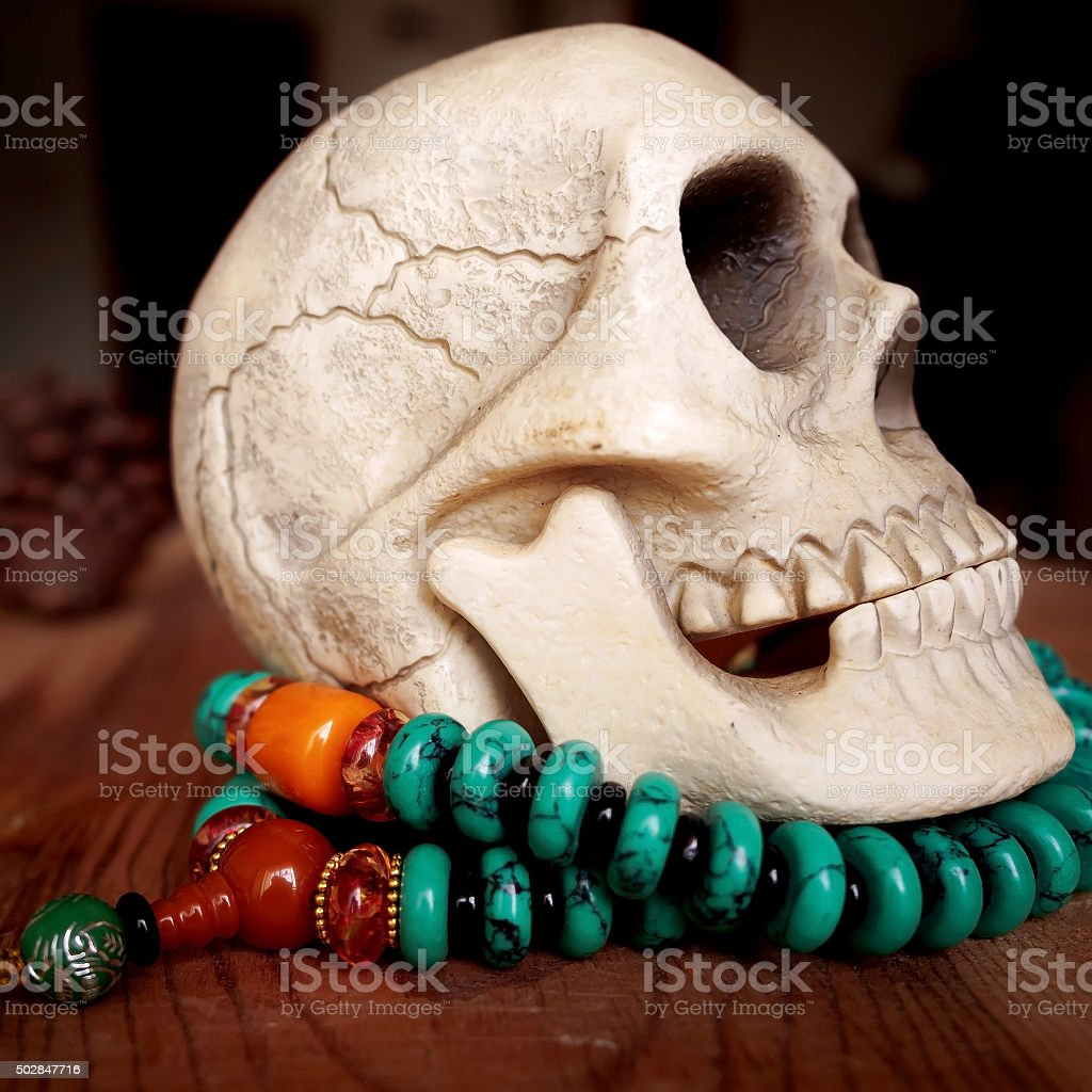 Close up of Human skull model on beads stock photo