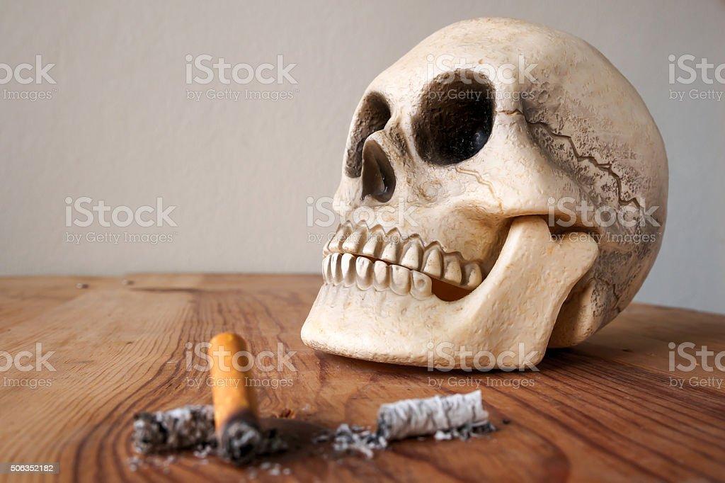 Close up of Human skull model stock photo