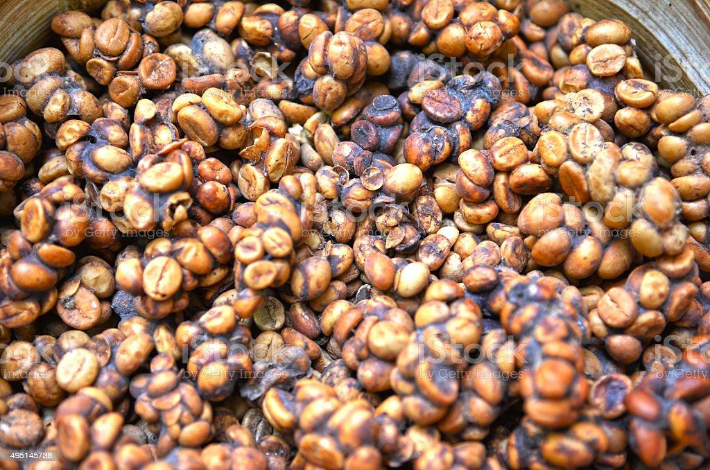 Close up of Kopi Luwak coffee bean stock photo