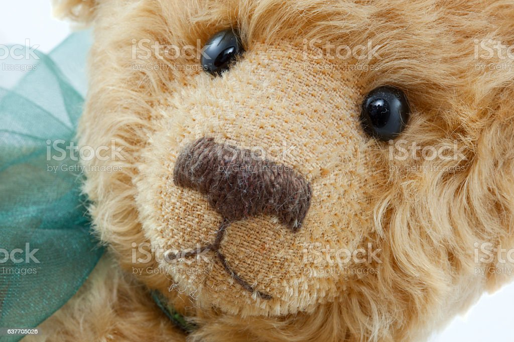 Close Up of Light Brown Teddy Bear With Green Ribbon royalty-free stock photo