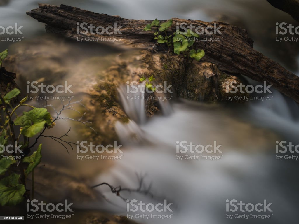 close up of lowing water around the stones and tree branch royalty-free stock photo
