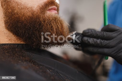 986804130istockphoto Close up of male professional hairdresser serving client with thick big beard by clipper. Ginger handsome brutal stylish young man getting trendy haircut in black cape. Light white barber shop room 892827392