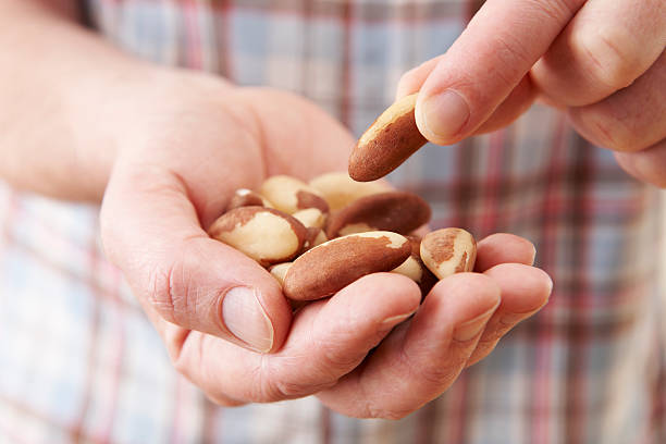 Close Up Of Man Eating Healthy Brazil Nuts Natural foods offer health benefits in diet handful stock pictures, royalty-free photos & images