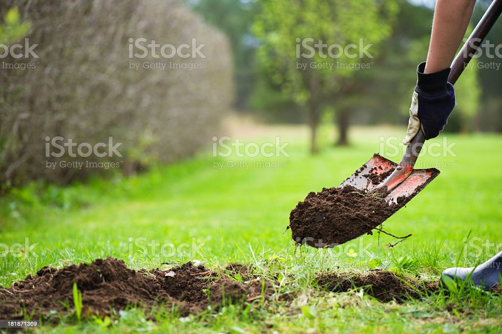Close up of man shoveling dirt out of a hole stock photo