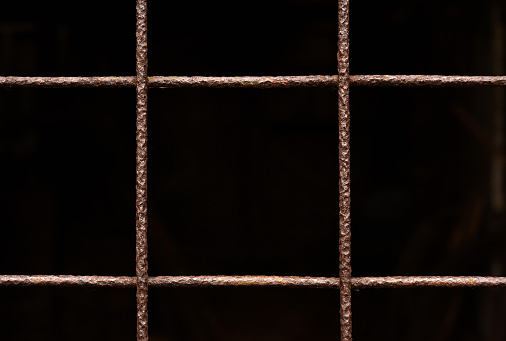 A close up on the metal grate on the door of a chicken Coop.