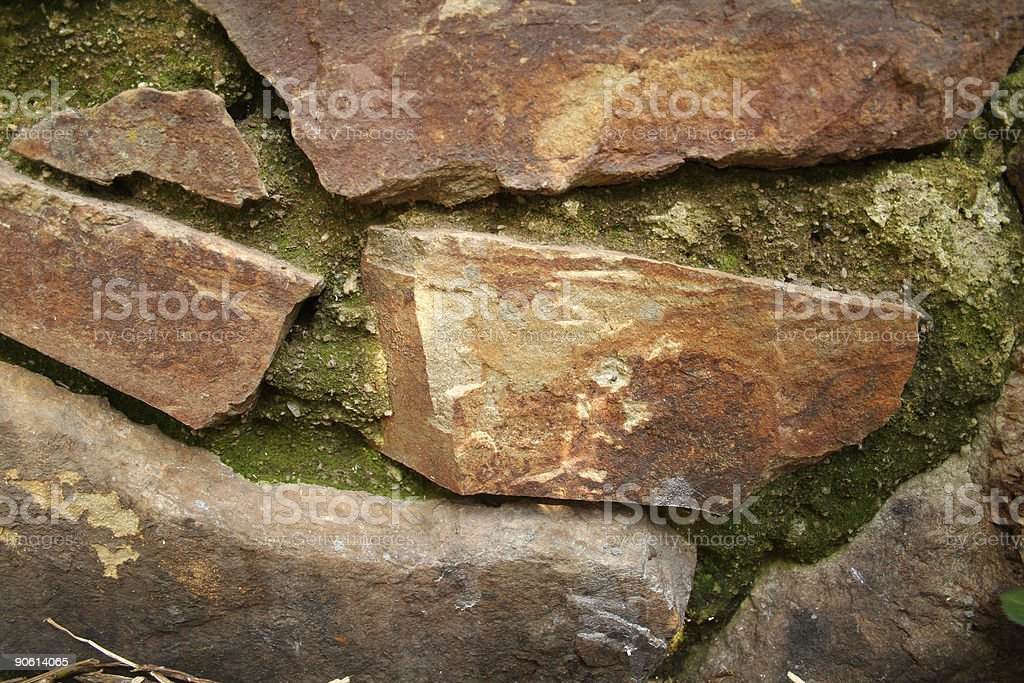 Close up of moss on a rock wall stock photo