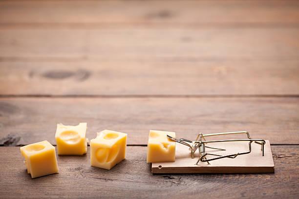 primo piano del mouse trappola sul vecchio tavolo di legno - trappola per topi foto e immagini stock