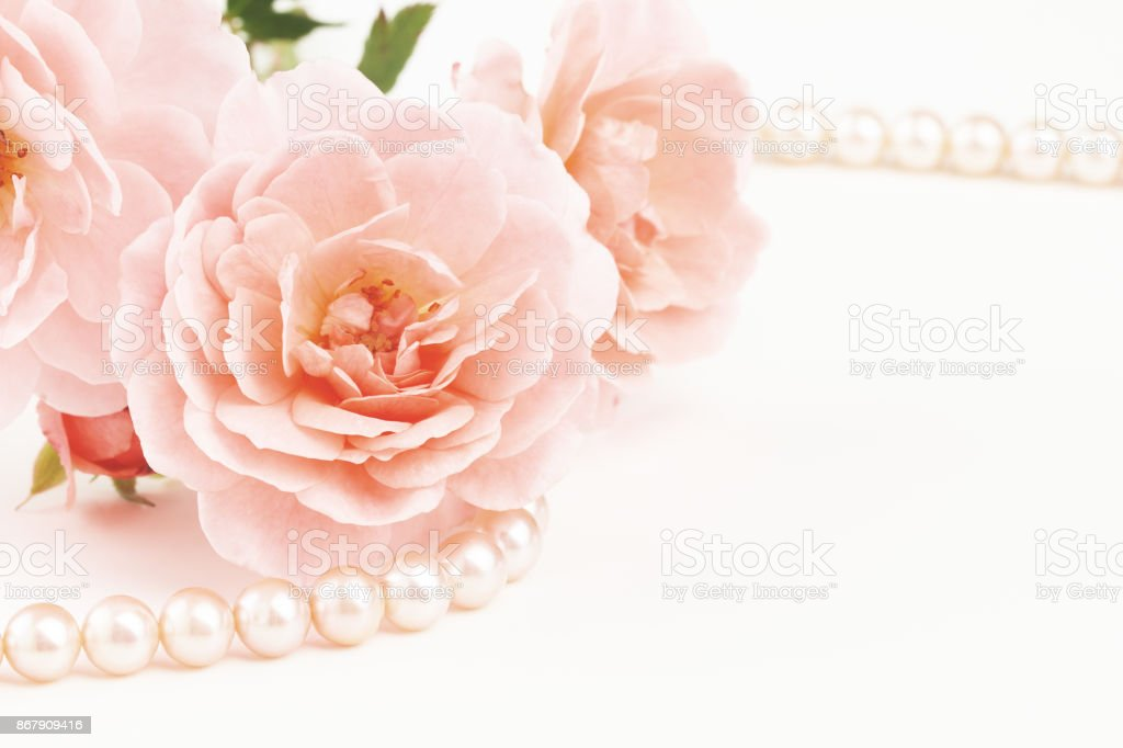 Close up of pearls and pink roses stock photo