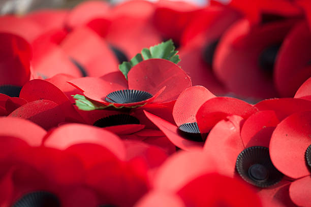 Close up of Poppies on Remembrance Wreaths stock photo