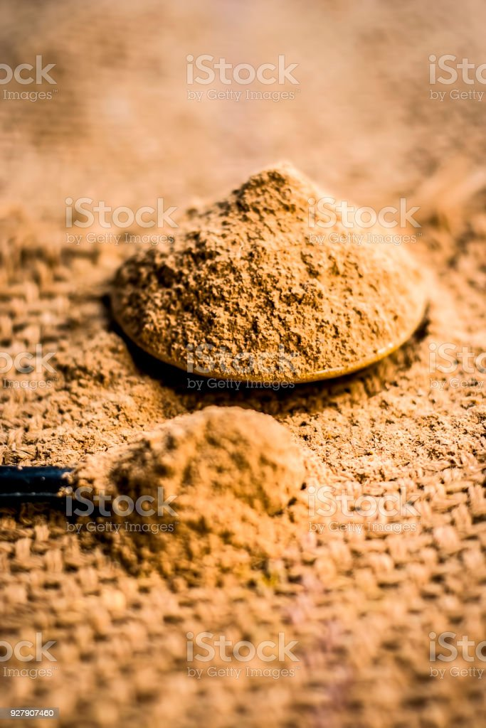 Close up of powder of babool fruit,Acacia nilotica Linn powder on gunny background is beneficial & ayurvedic medicine for tooth problems. stock photo
