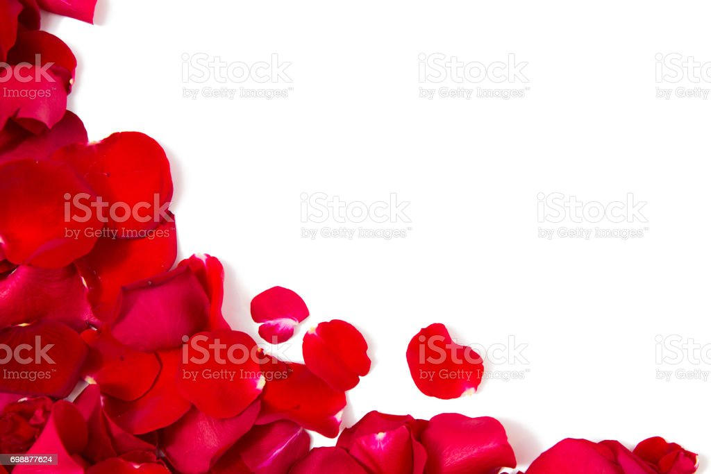 close up of red rose petals with copyspace stock photo