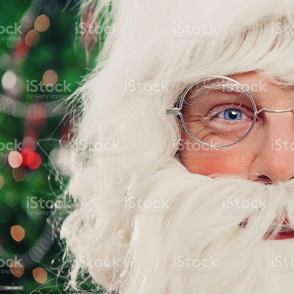 Close up of Santa Claus face royalty-free stock photo