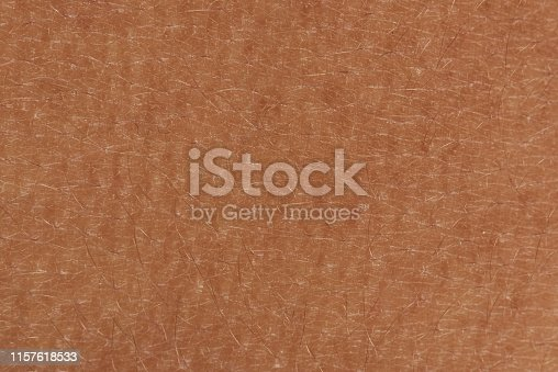 istock Close up of skin texture 1157618533