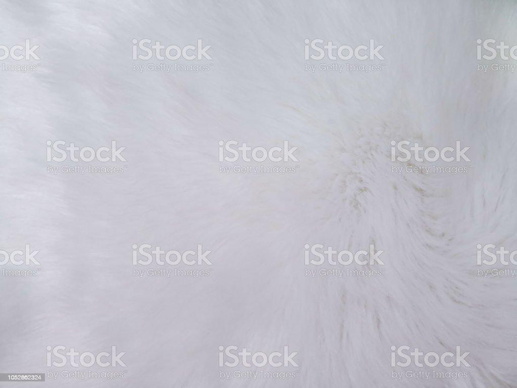close up of smooth white animal hair.