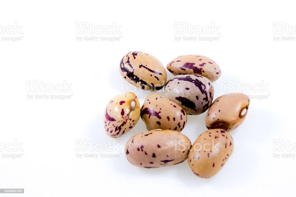 close up of some borlotti beans stock photo