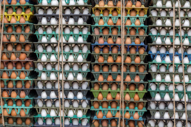 Close up of stacks of brown and white eggs in Dhaka, Bangladesh – Foto